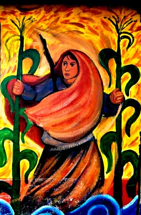 http://redlatinasinfronteras.files.wordpress.com/2007/10/campesina.jpg
