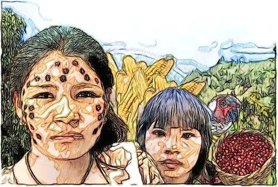 Resultado de imagen para venezuela indigenas yukpas