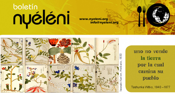 ____Nyeleni-Boletín_