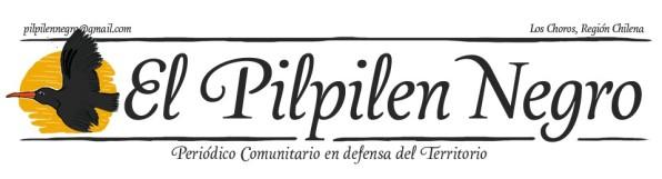 _________________Pilpelen Negro_Chile__