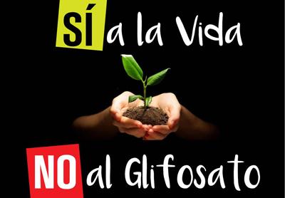 __________GlifosatoNO