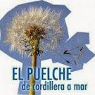 ____puelche_