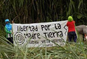 ____liberacion