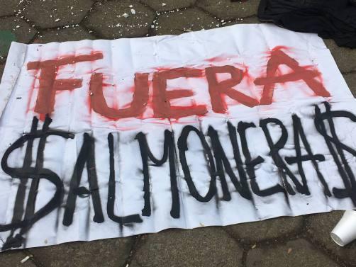 ______no-salmoneras
