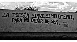 ___poesia-para-no-dejar-de-ser