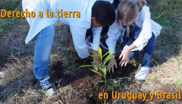 _____Derecho a laTierra