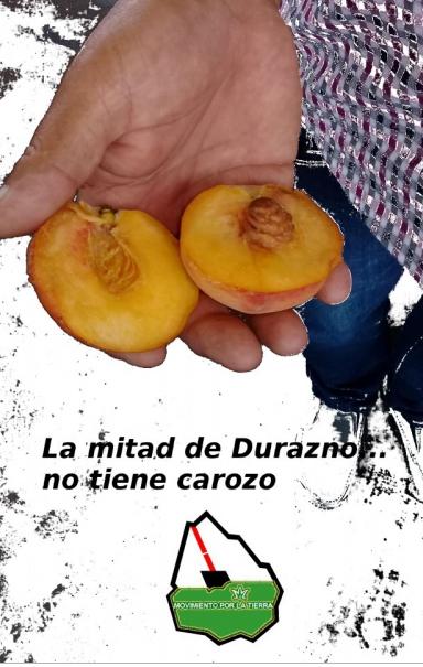 _____urug__durazno