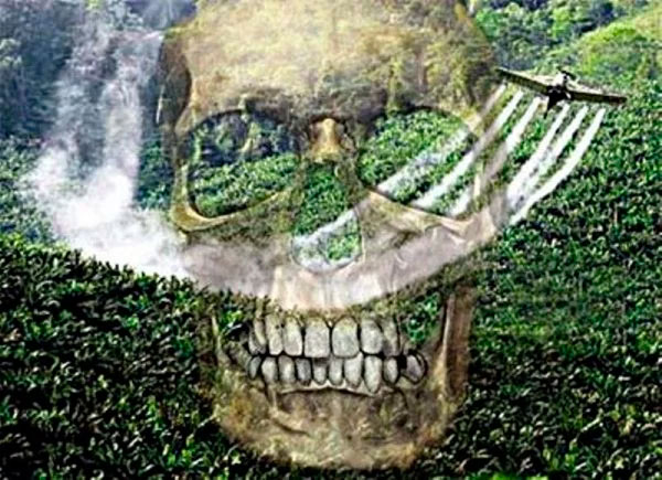 ___________agrotoxicos1