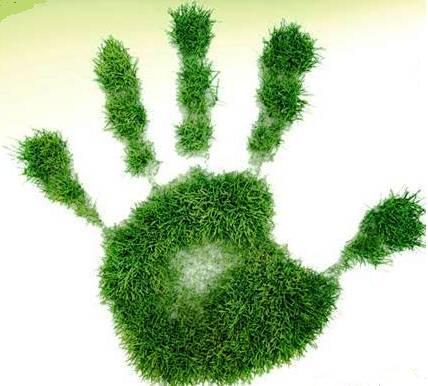 ______ecologia en accion