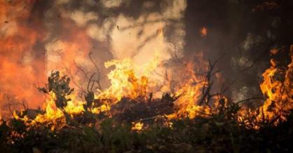 _______incendio Boloivia