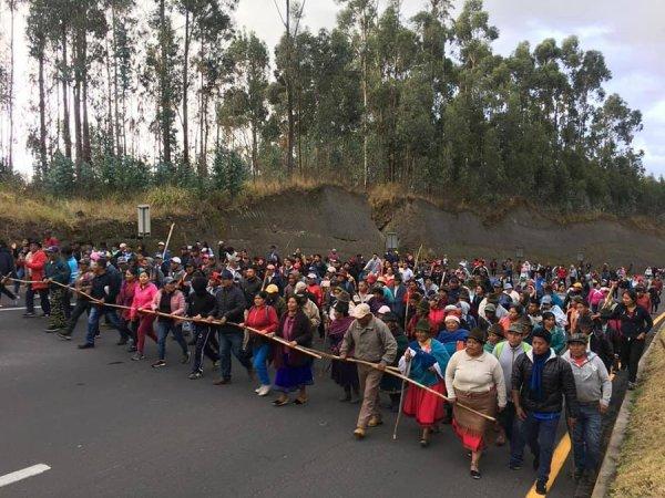 Ecuador movilizado