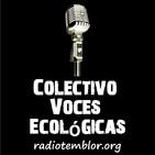 ____Voces__Panama ECO