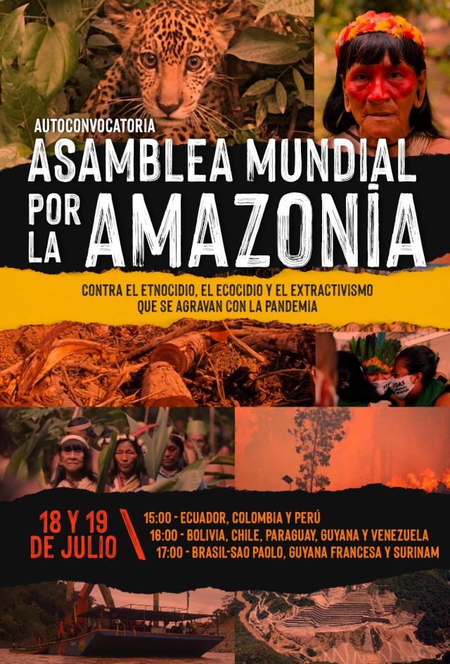 ____________amazonia-convocatoria