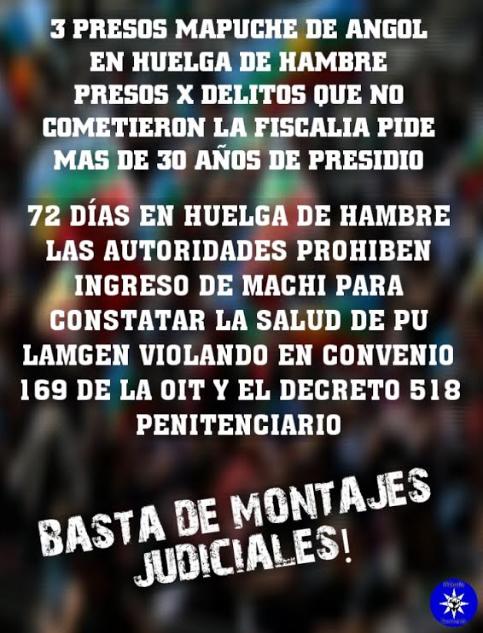 _____Presos Mapuche