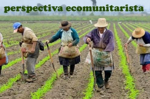 ____EcoComunitarismo__